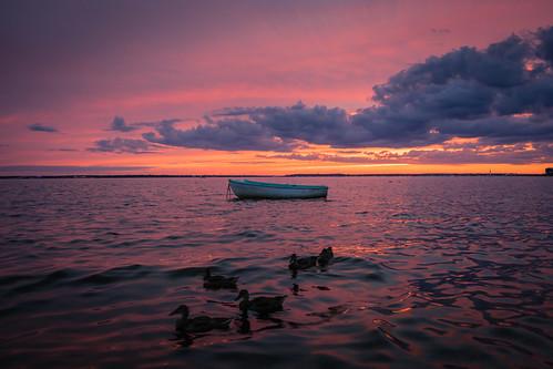 ocean sunset vacation animal boat newjersey cloudy ducks beachweek seasideheights 2870mm