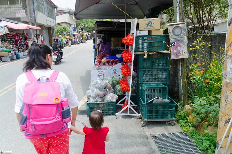 Our Visit to Nantou, Part One