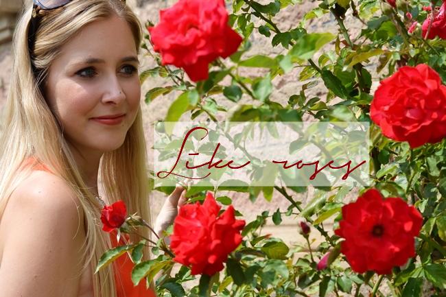 Like roses Banner
