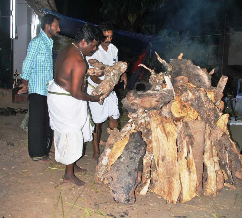 06 Totaima (Kerala) (4)