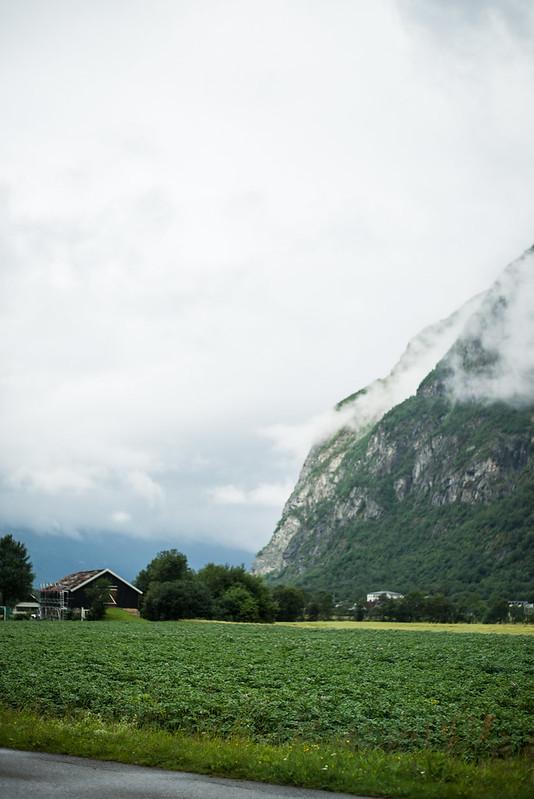 Norge roadtrip-34