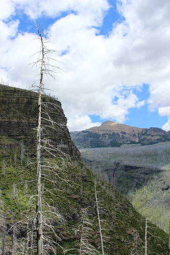 flattop_mountain_2014-07-26_171