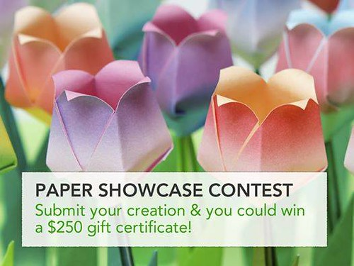 paper-showcase-contest