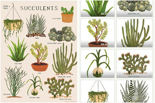 Succulent Print on White fabric - wiksten - Spoonflower