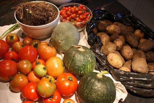 harvest 8-18-2014