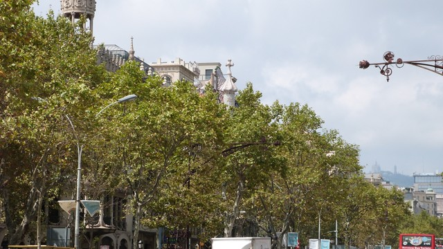 Barcelona091