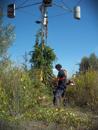 Ultimando detalles desde la Producción.  Oscar (#Apa) facilita el acceso a pie de #molino,  cortando #hierba. #windmill