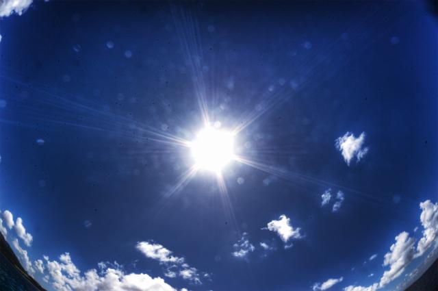 今日も日差しが強かったぁ♪
