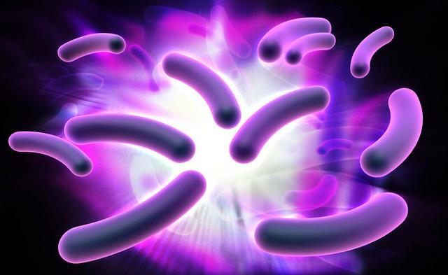 bacterias electricidad diarioecologia