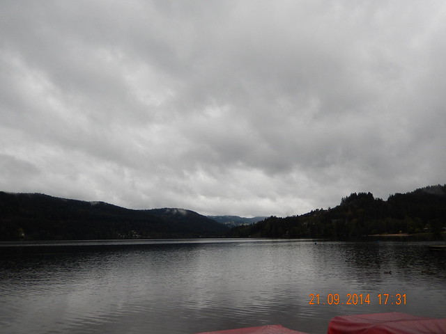 The silence of Titisee Lake