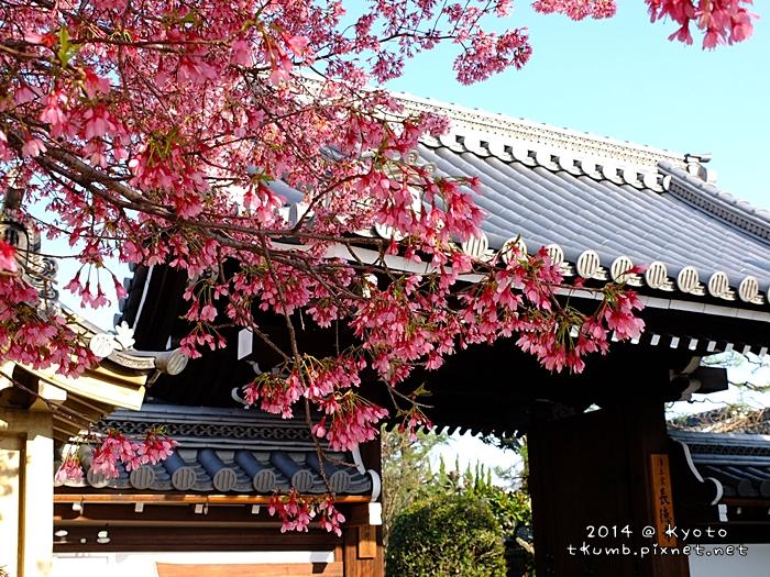2014-03-27 16.00.12.jpg