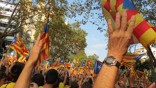 Catalonia National Day #11s2014 #CatalansVote9N Diada - 39