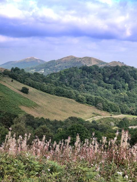 Best view of the Malverns?