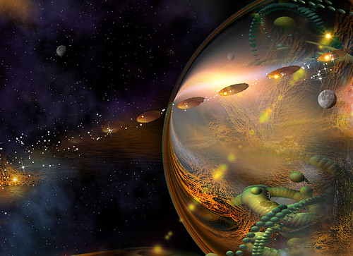 About the Cosmos Across the Multiverse