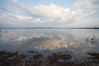 Open Sky Shoreline