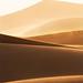 Sandstorm Portrait by Rob Kroenert