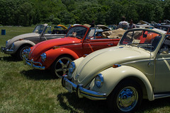 automobile, volkswagen beetle, vehicle, automotive design, mid-size car, city car, volkswagen type 14a, antique car, vintage car, land vehicle,