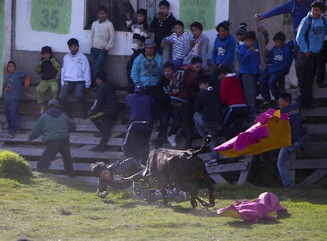 Torros del pueblo, Ecuador