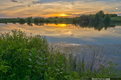 sunset summer sky orange reflection water june yellow gold mirror golden evening pond colorful dusk iowa wildflowers milkweed hdr kevinpalmer keosauqua tamron1750mmf28 lakesugema pentaxk5