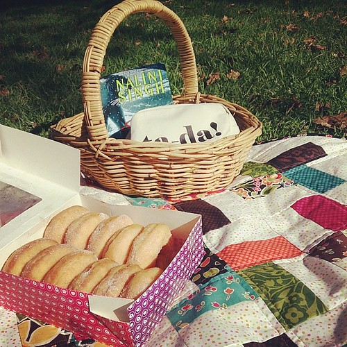 Sunday morning picnic: quilt, handsewing, book, donuts.