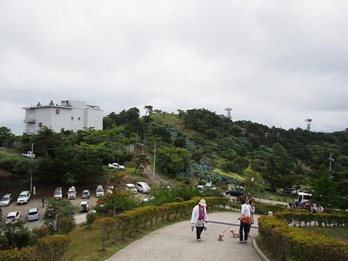大野山山頂は向こう側