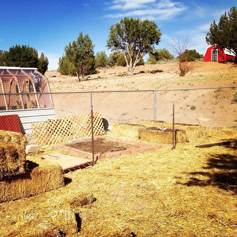 Gardening Progress