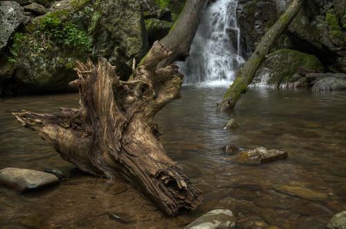 travel vacation nature landscape virginia waterfall nationalpark nikon unitedstates outdoor hiking shenandoah hdr crozet d300 landscapephotography 18200mm photomatix doylesriverfalls brandonmkopp