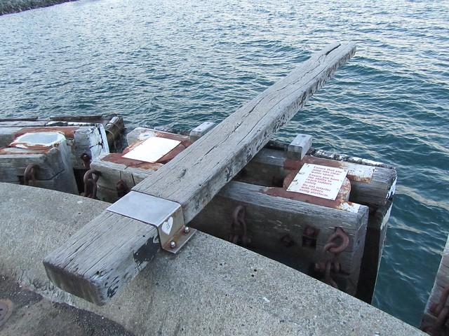 TRAMPOLÍN EN el puerto de Wellington