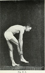 "Image from page 46 of ""Massage & exercises combined : a permanent physical culture course for men, women and children : health-giving, vitalizing, prophylactic, beautifying : a new system of the characteristic essentials of gymnastic and Indian Yogis conc"