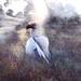 Ode to a Nightingale by Helen Warner (airgarten)