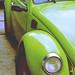 escarabajo por a'honni