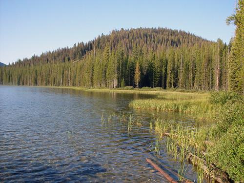 Bull Trout Lake Idaho Fishing Planner