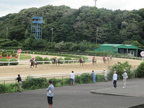 佐賀競馬場の走路を馬が駆ける