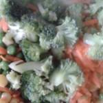 Torta de Legumes (3)