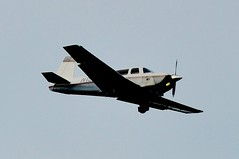 White Lake Aerial Wildlife