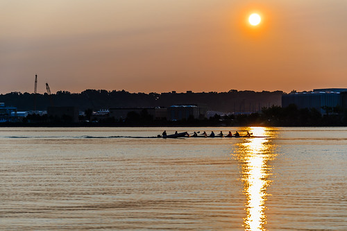 Sculling on the Potomac by Geoff Livingston
