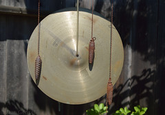 musical instrument, close-up, cymbal,
