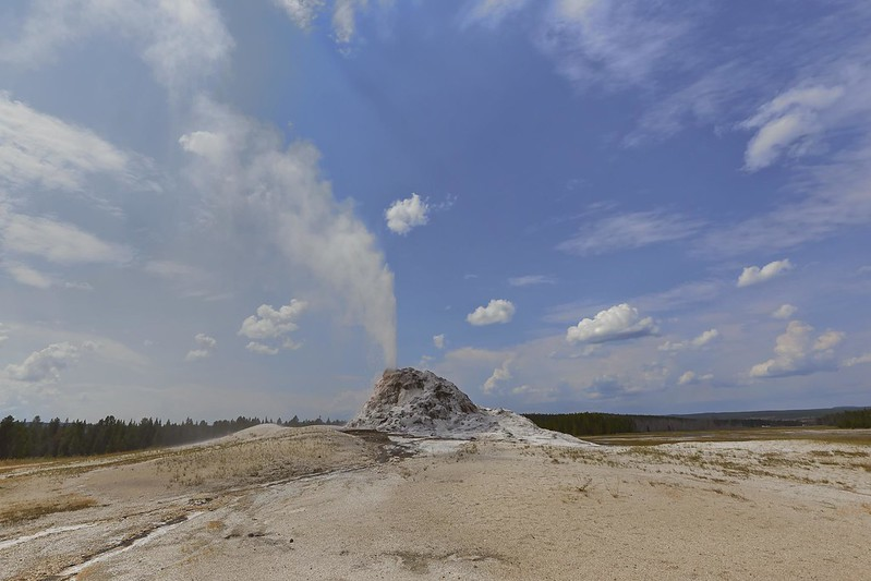 White Dome Geyser - Yellowstone National Park