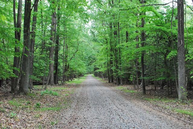 Caledon trail