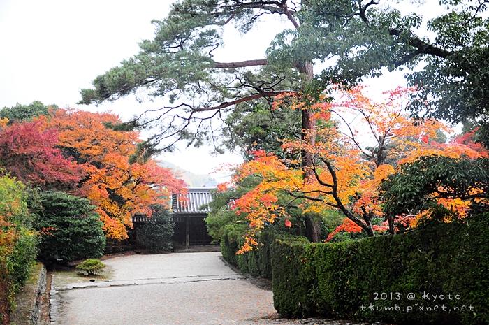 2013修學院離宮 (12).jpg