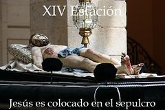 XIV Estación