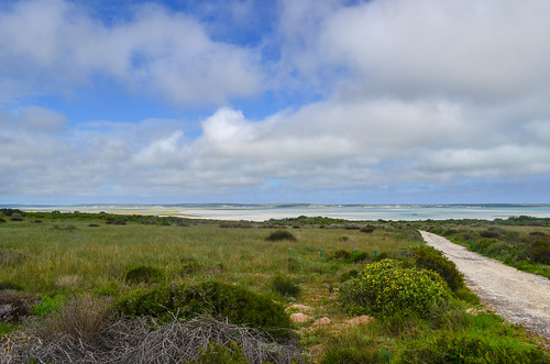 Langebaan lagoon, South Africa
