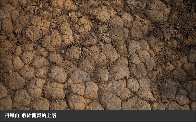 013收縮開裂的土層