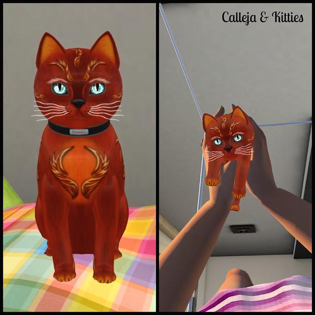kittycats3