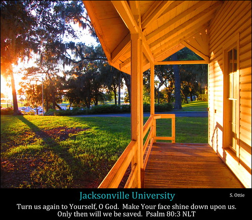 school trees light usa sun house college grass america campus evening us twilight university florida dusk united deck porch jacksonville fl states sunse delius