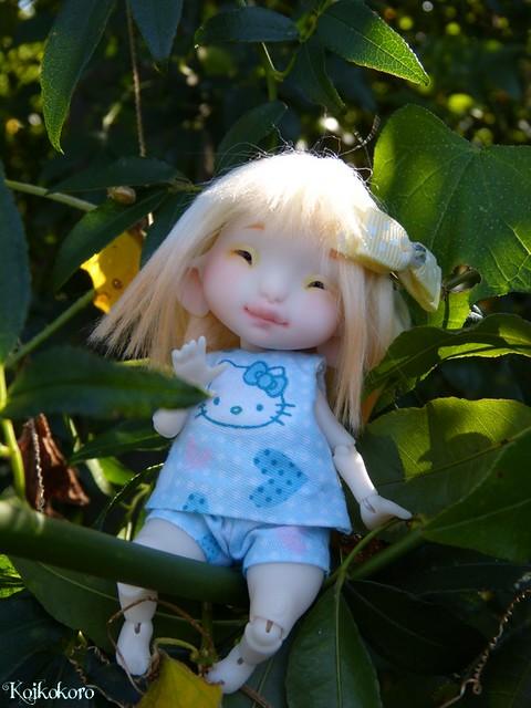 Les tinies de Koikokoro~photos en vrac - Page 6 15039955600_6a1297741a_z