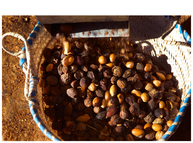 separating_of_argan_fruit_pulp_from_the_nut-25