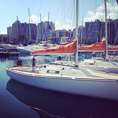 Who\'s ready for Club Sailing today? It\'s gorgeous on #lakemichigan #j22