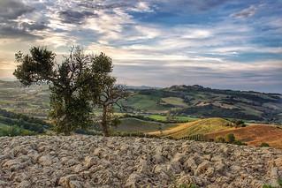 Valle dell'Aso in Southern Le Marche