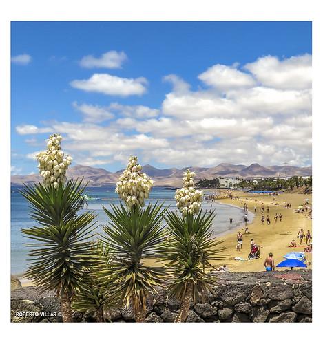 Vista de Playa Grande